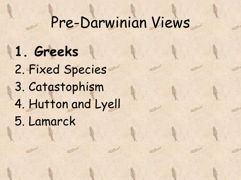 Pre-Darwinian Views 1. Greeks 2. Fixed Species 3. Catastophism