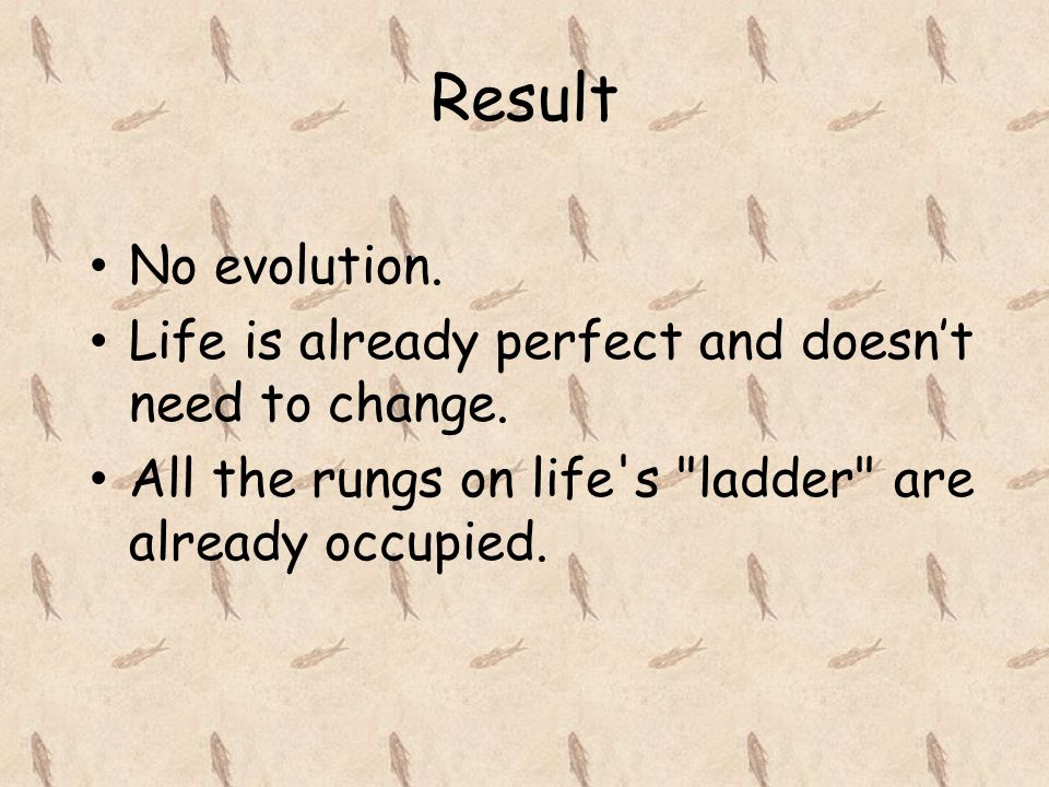 Result No evolution. Life is already perfect and doesn't need to change.