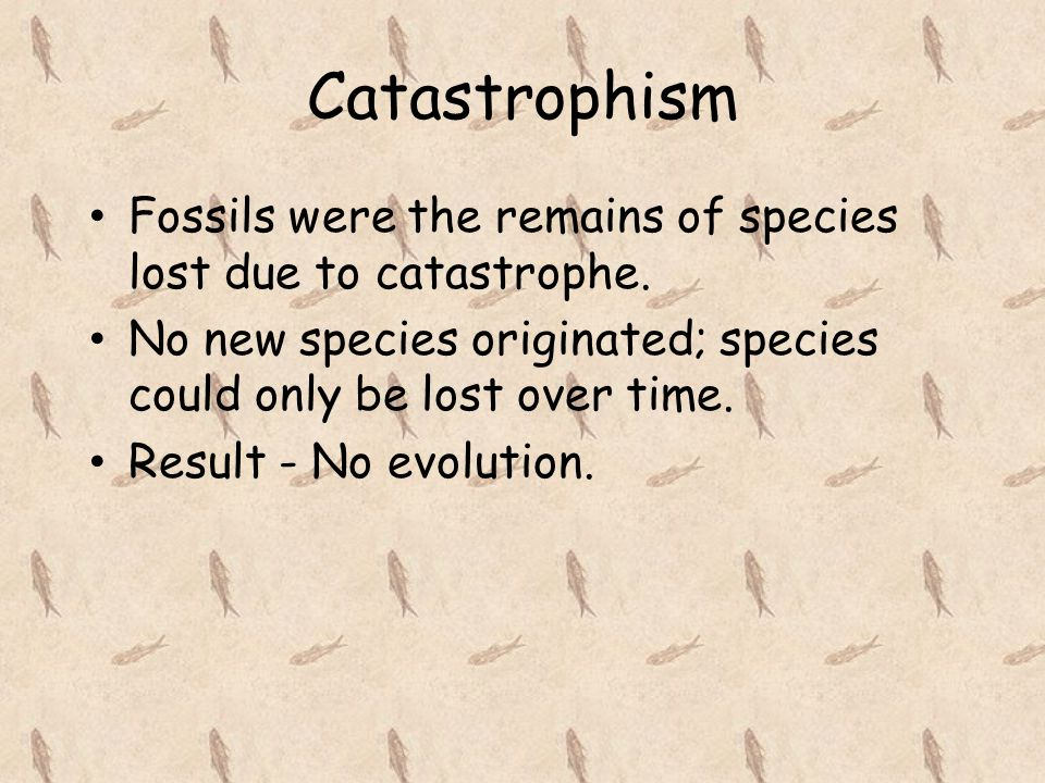 Catastrophism Fossils were the remains of species lost due to catastrophe. No new species originated; species could only be lost over time.