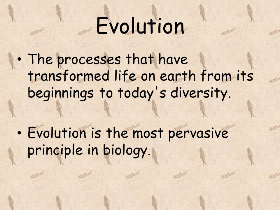 Evolution The processes that have transformed life on earth from its beginnings to today s diversity.