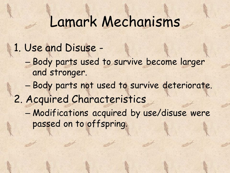 Lamark Mechanisms 1. Use and Disuse - 2. Acquired Characteristics