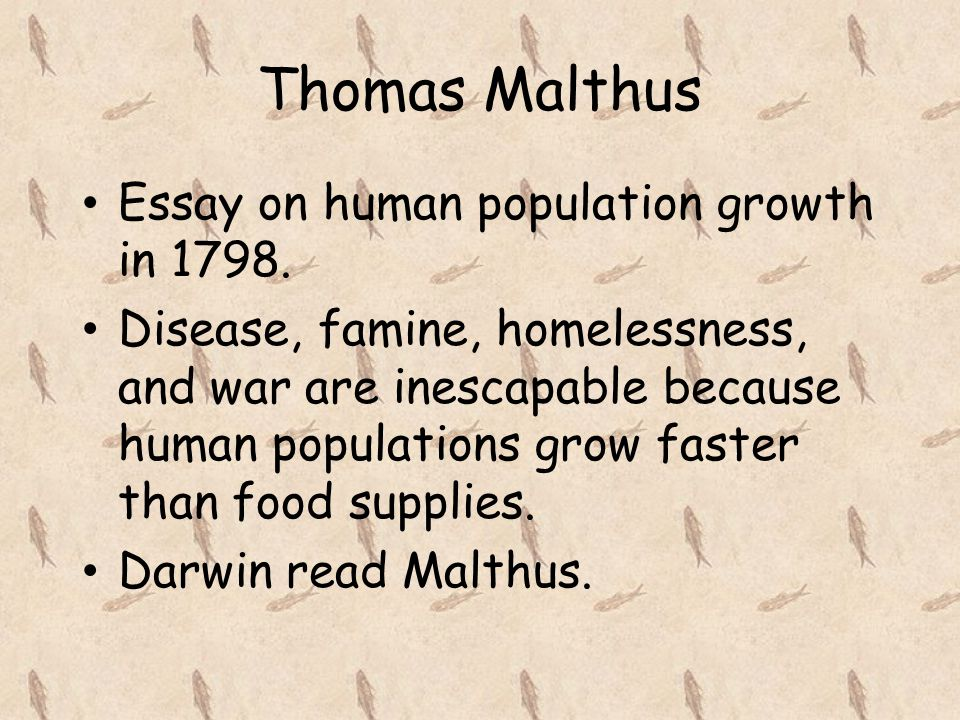 chapter descent modification ppt thomas malthus essay on human population growth in 1798