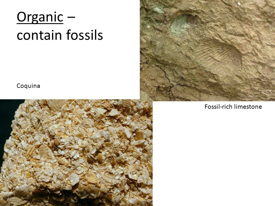 Organic – contain fossils