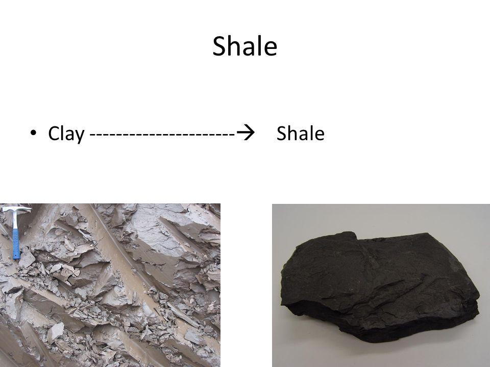 Shale Clay ---------------------- Shale