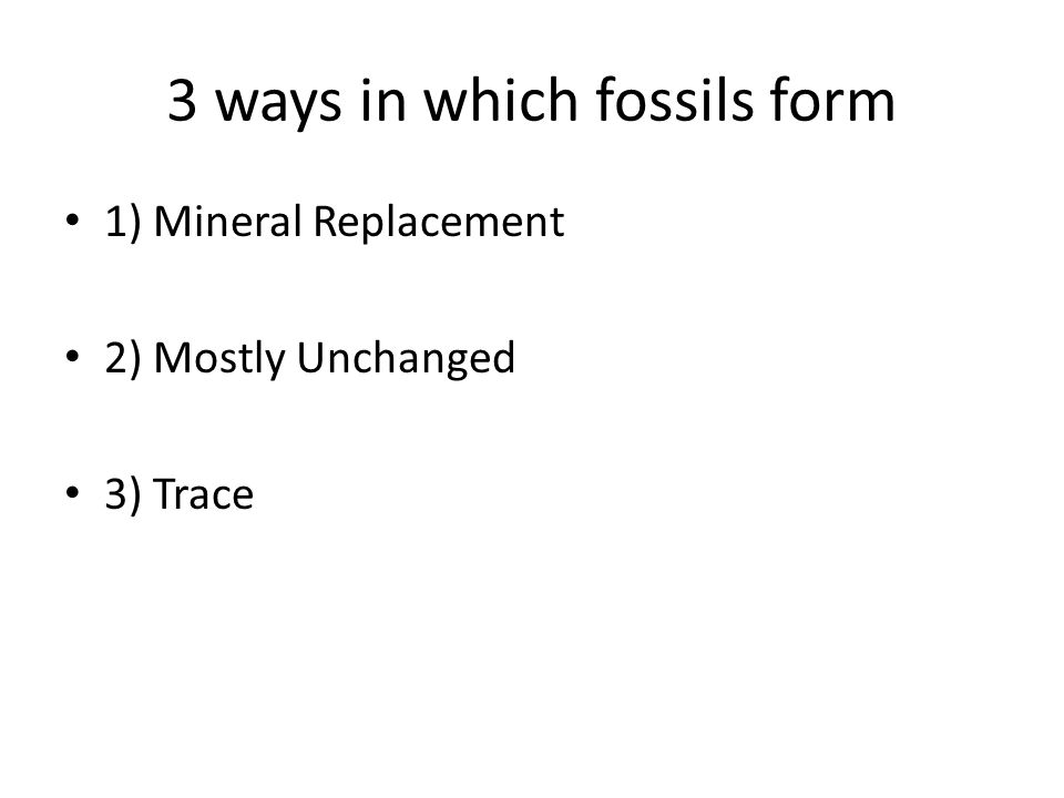 3 ways in which fossils form