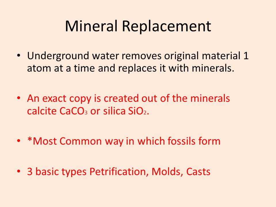 Mineral Replacement Underground water removes original material 1 atom at a time and replaces it with minerals.