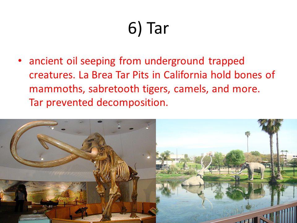 6) Tar