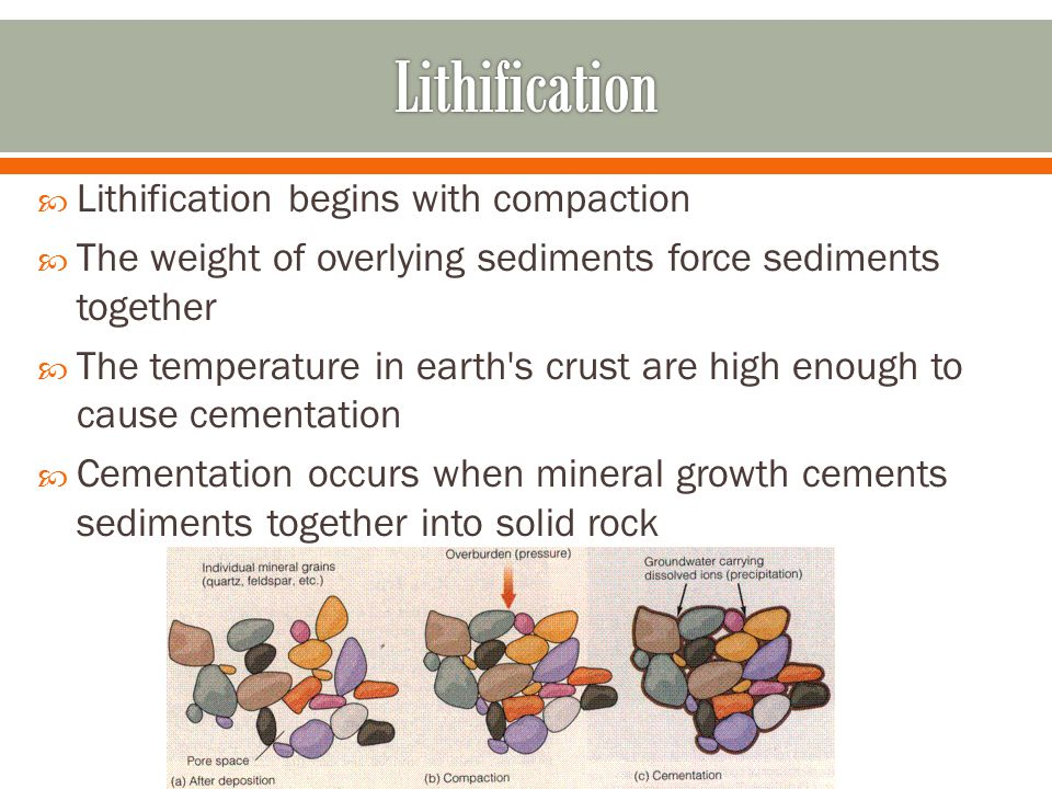Lithification Lithification begins with compaction