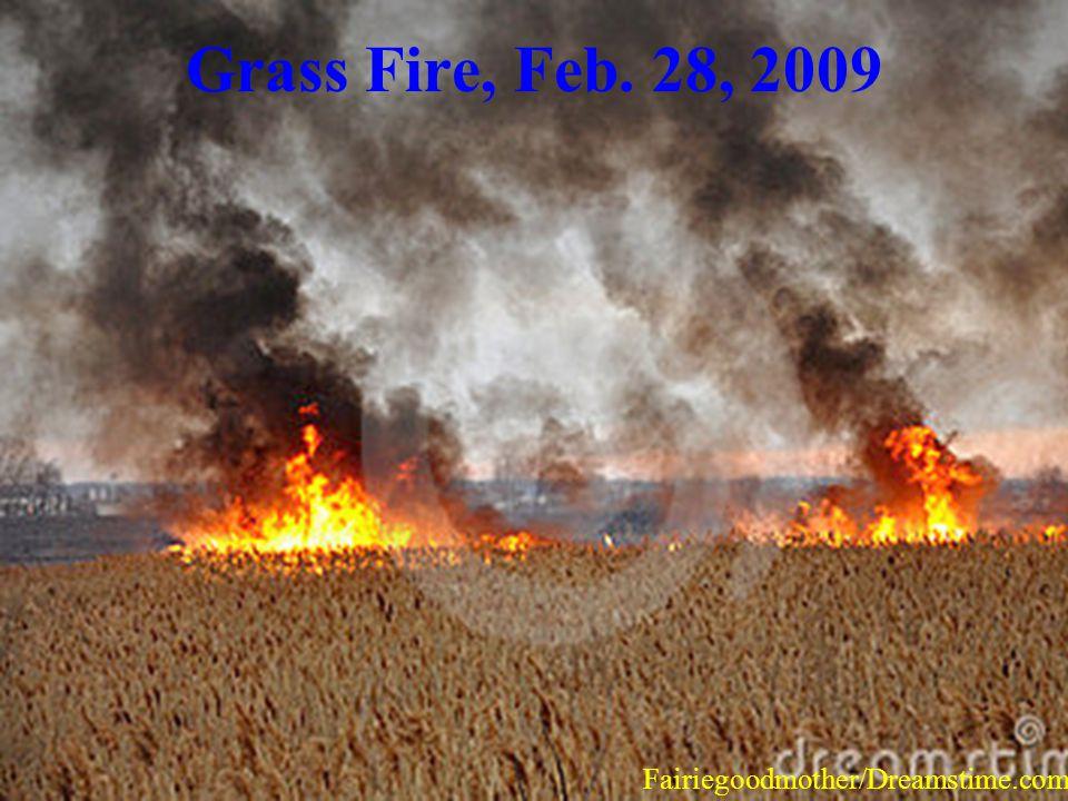 Grass Fire, Feb. 28, 2009 Fairiegoodmother/Dreamstime.com.
