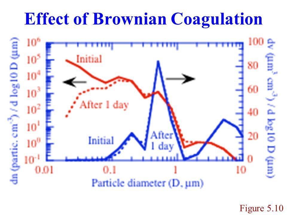 Effect of Brownian Coagulation