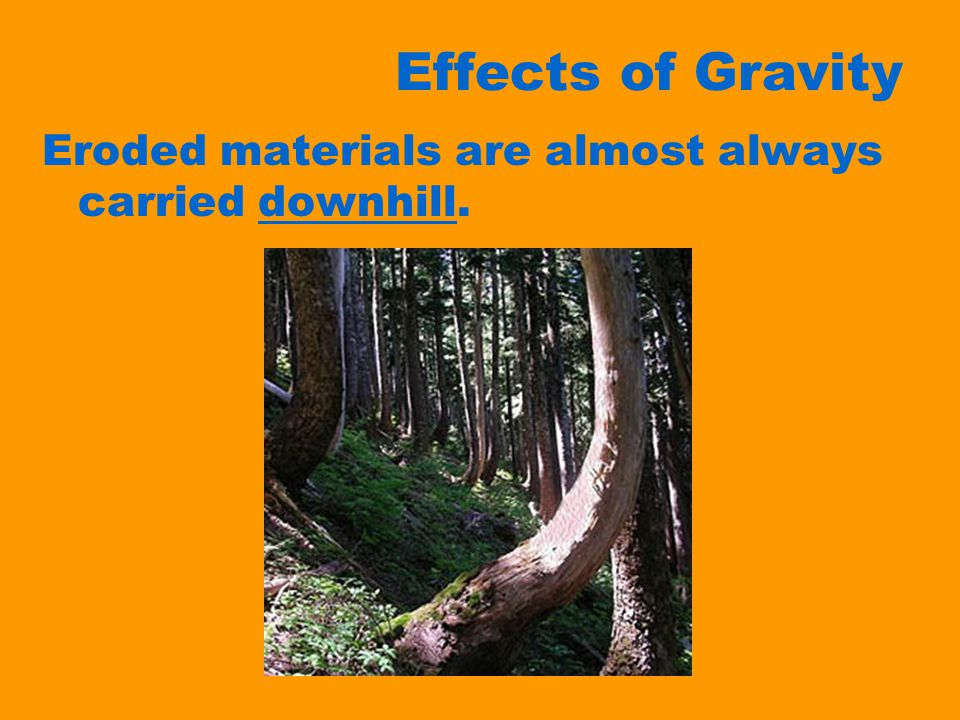 Effects of Gravity Eroded materials are almost always carried downhill.