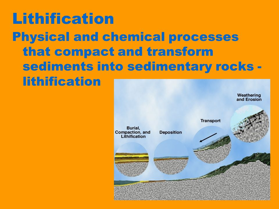 Lithification Physical and chemical processes that compact and transform sediments into sedimentary rocks - lithification.