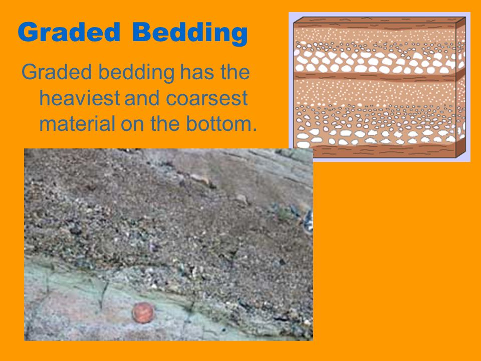 Graded Bedding Graded bedding has the heaviest and coarsest material on the bottom.