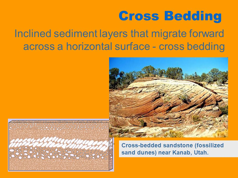 Cross Bedding Inclined sediment layers that migrate forward across a horizontal surface - cross bedding.