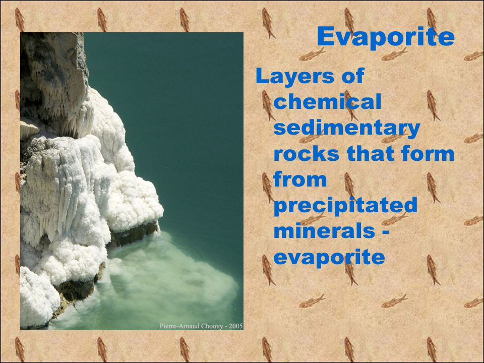 Evaporite Layers of chemical sedimentary rocks that form from precipitated minerals - evaporite
