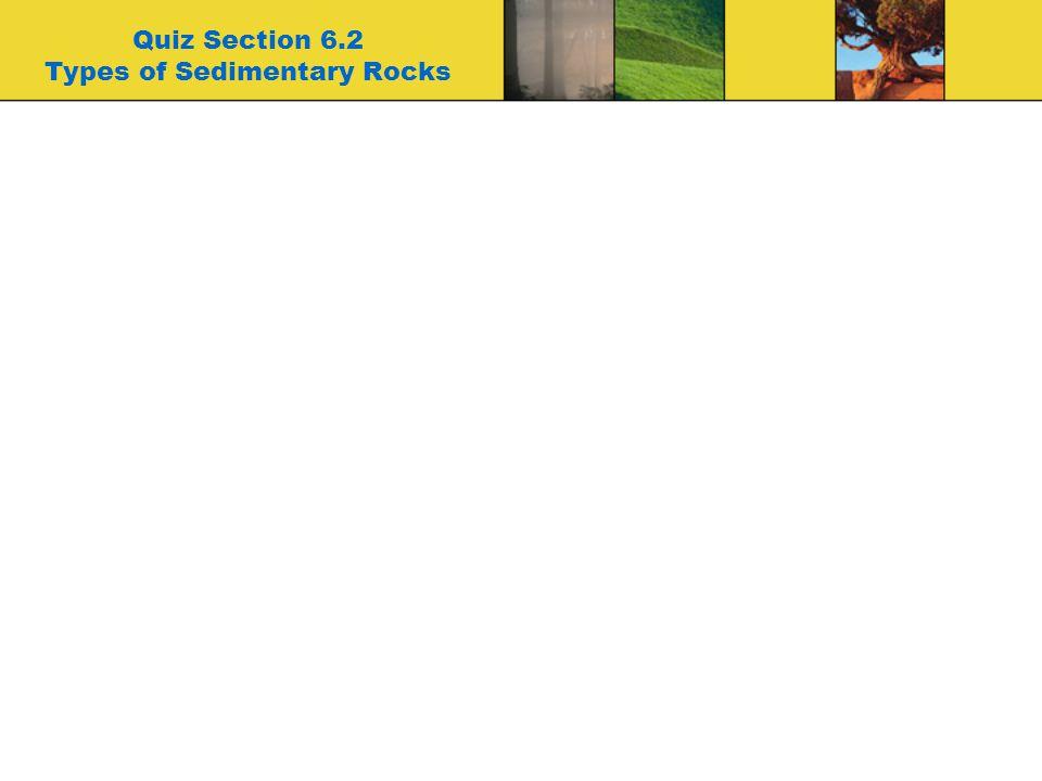 Quiz Section 6.2 Types of Sedimentary Rocks