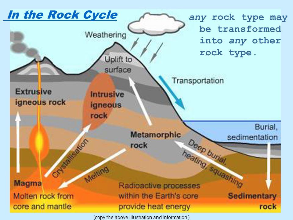 In the Rock Cycle any rock type may be transformed into any other rock type.