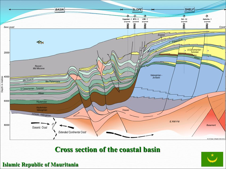 Cross section of the coastal basin