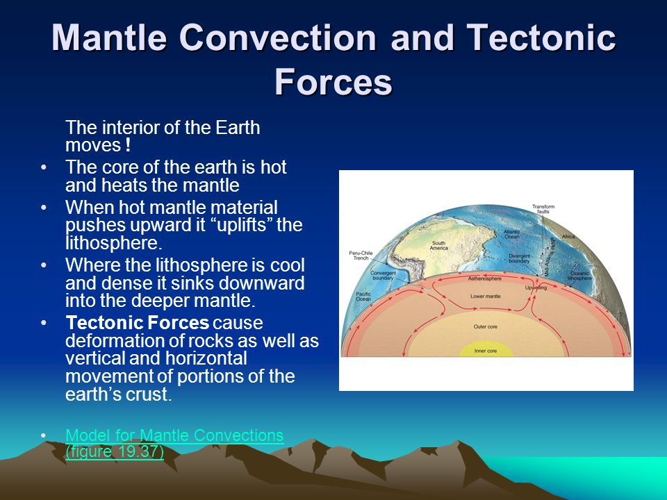 Mantle Convection and Tectonic Forces