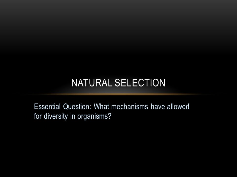 Natural selection Essential Question: What mechanisms have allowed for diversity in organisms