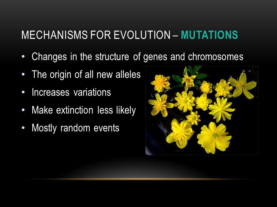 Mechanisms for Evolution – mutations