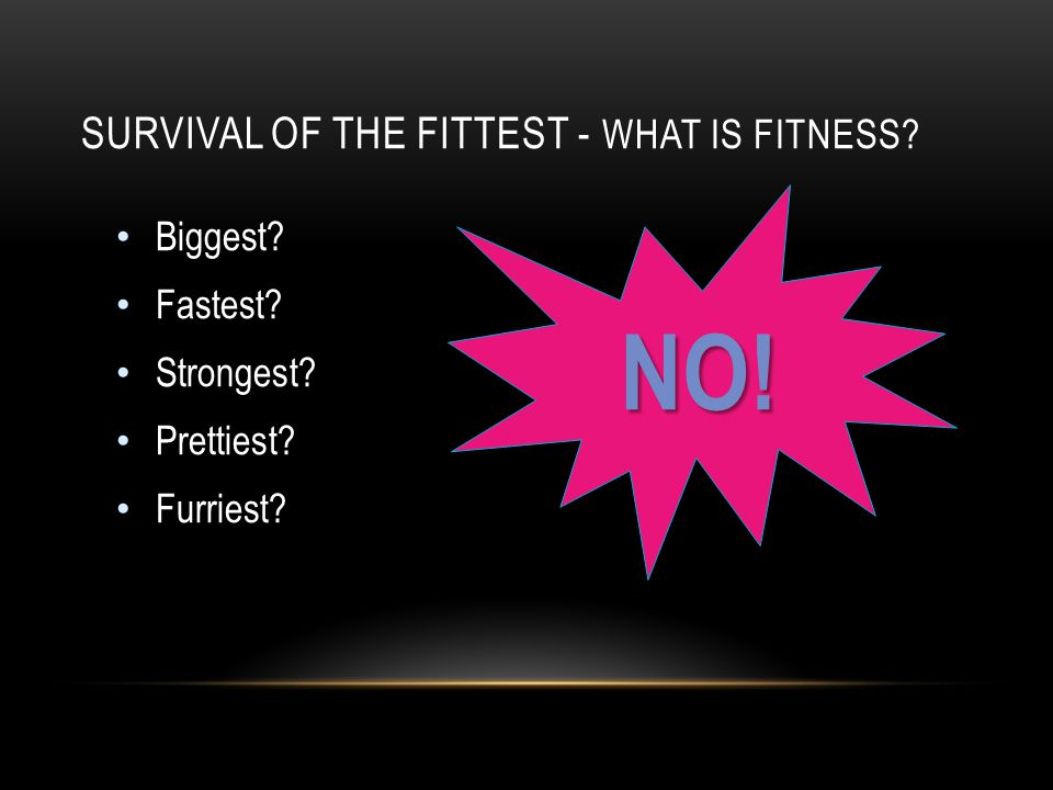 Survival of the Fittest - What is Fitness
