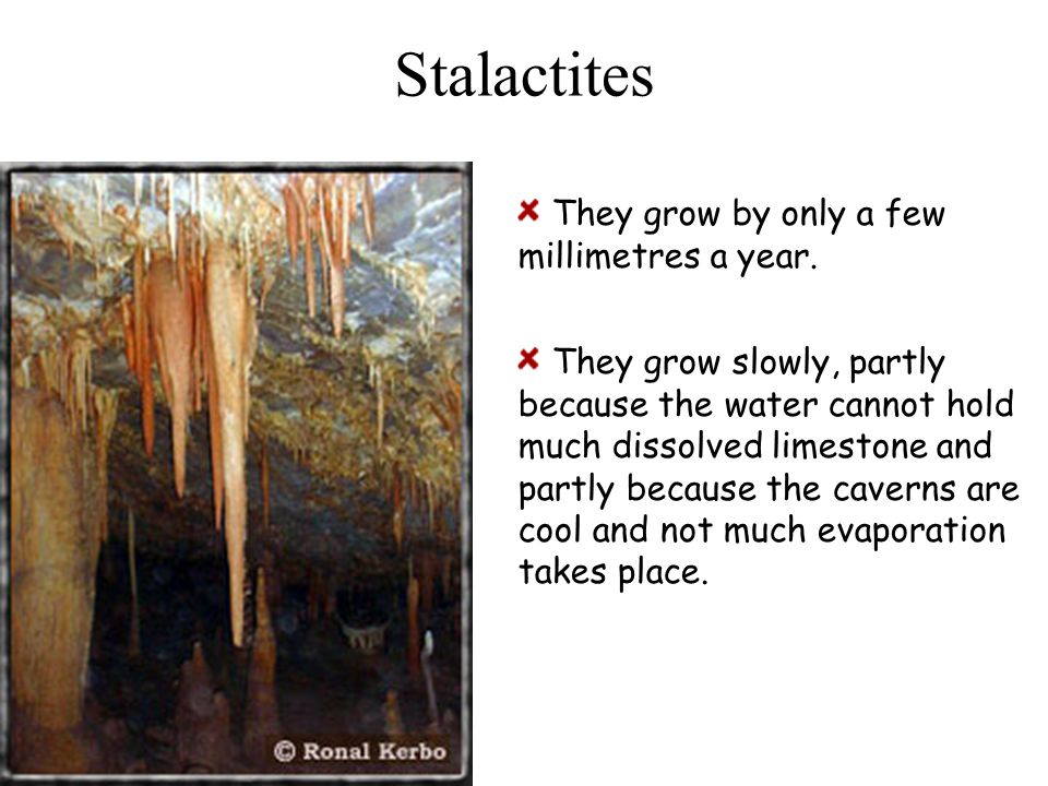Stalactites They grow by only a few millimetres a year.