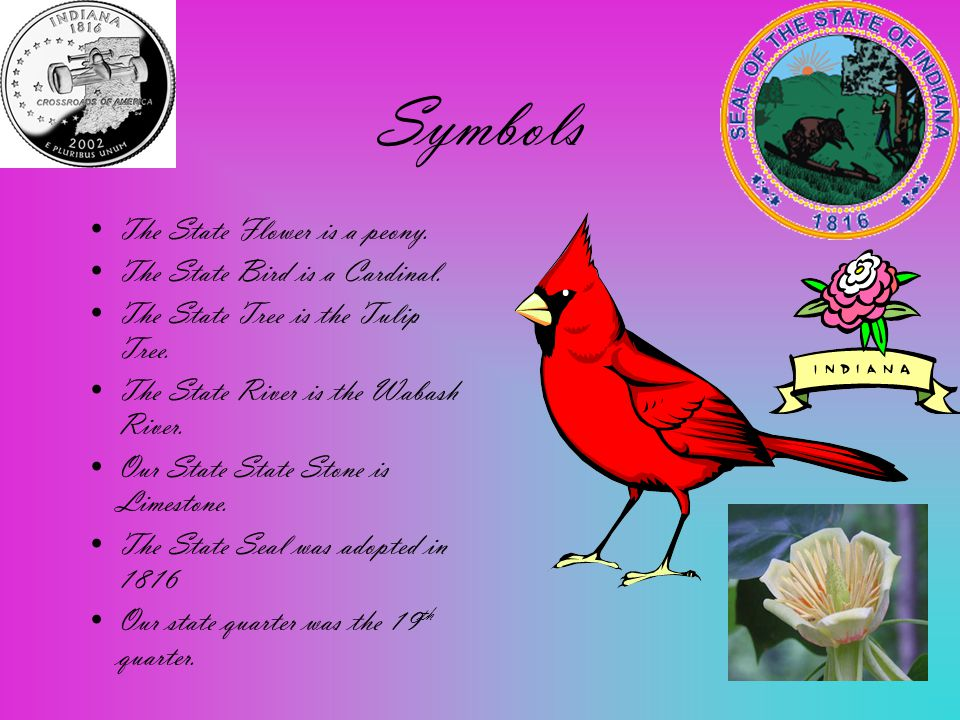 Symbols The State Flower is a peony. The State Bird is a Cardinal.