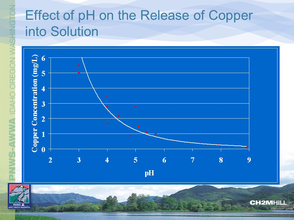 Effect of pH on the Release of Copper into Solution