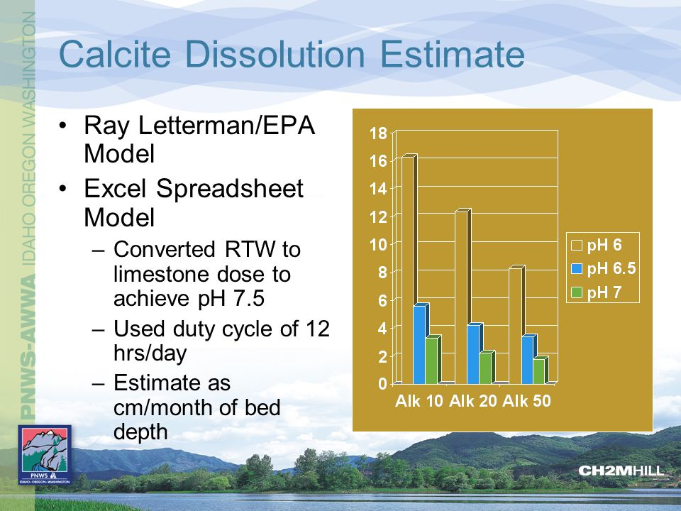 Calcite Dissolution Estimate