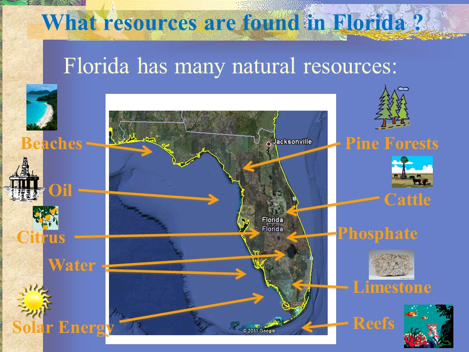 What resources are found in Florida