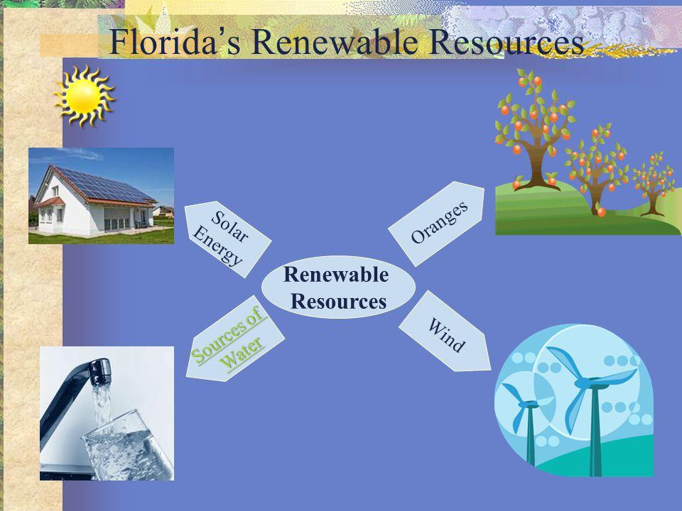 Florida's Renewable Resources