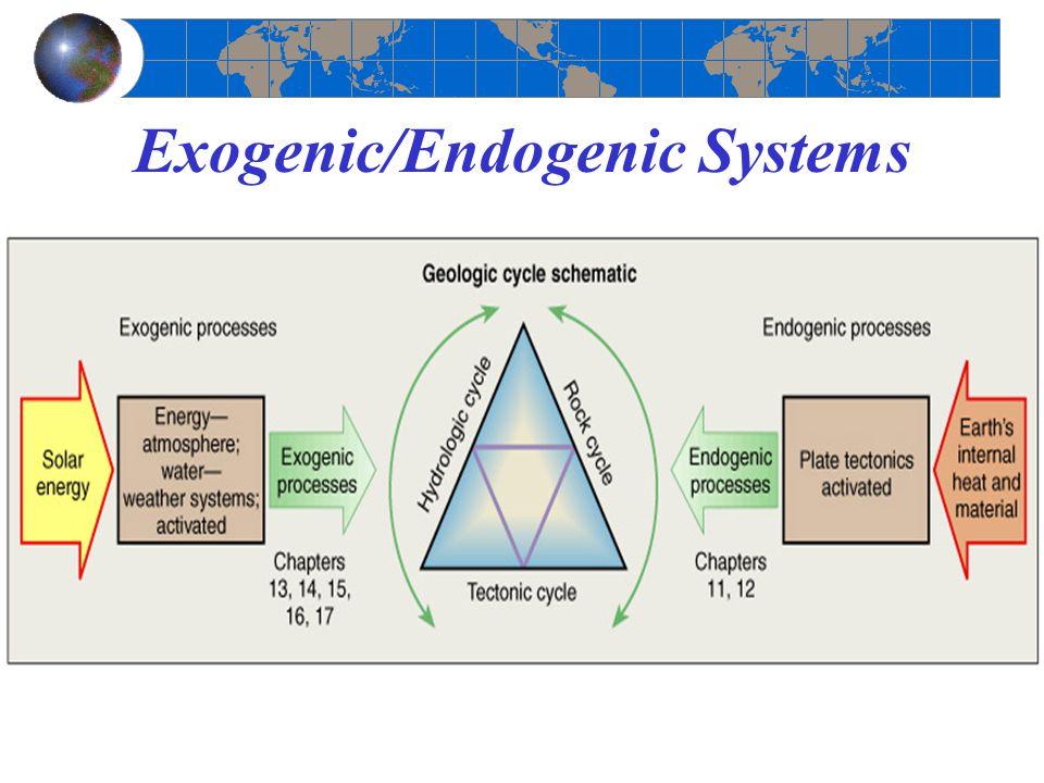 Exogenic/Endogenic Systems