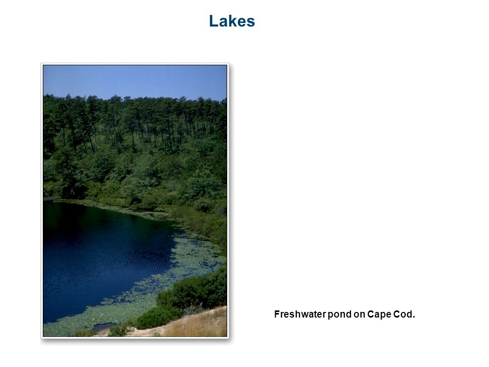 Lakes Freshwater pond on Cape Cod.