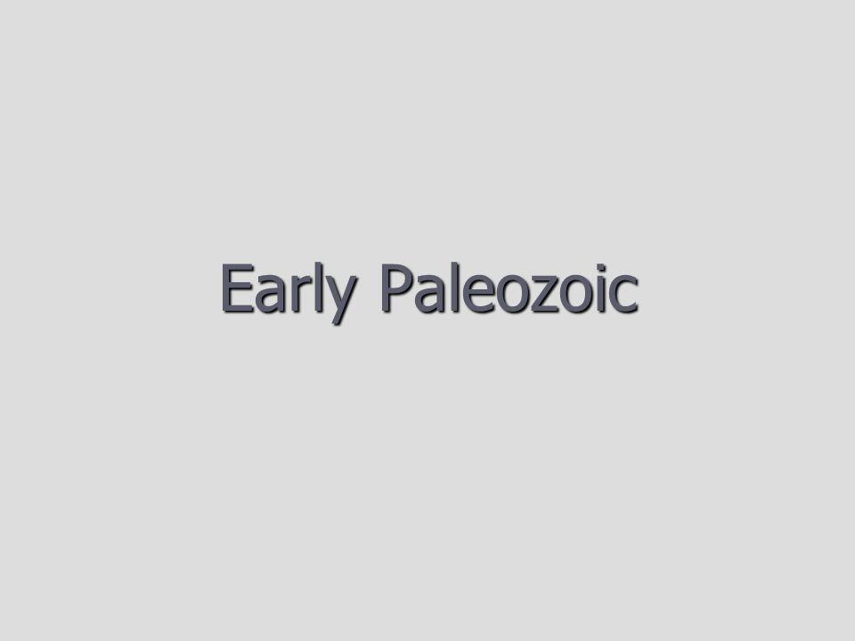 Early Paleozoic