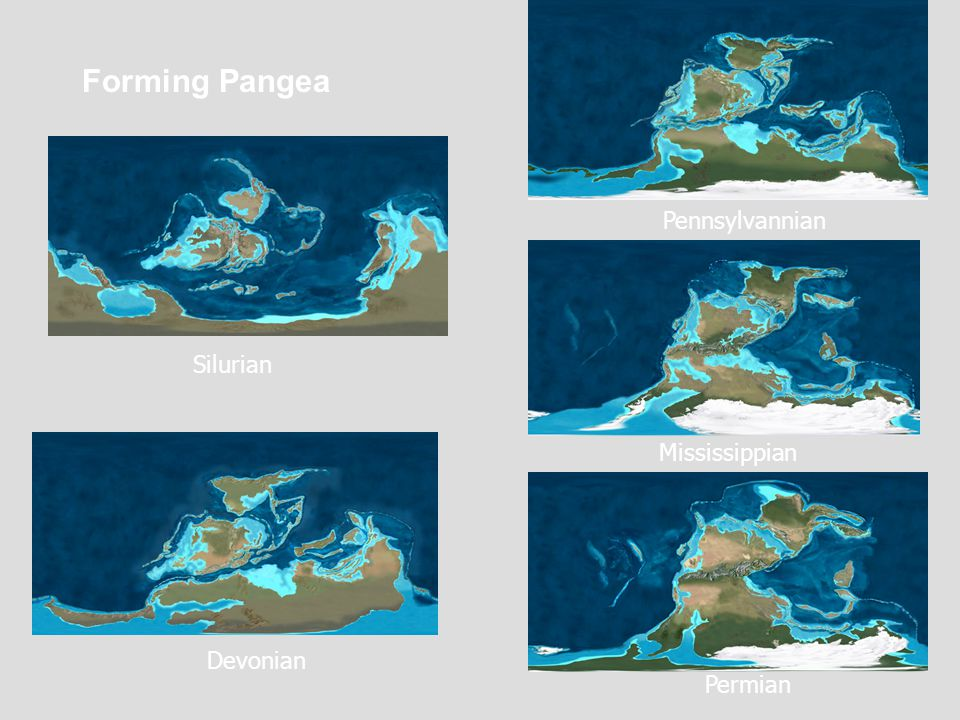 Forming Pangea Pennsylvannian Silurian Mississippian Devonian Permian