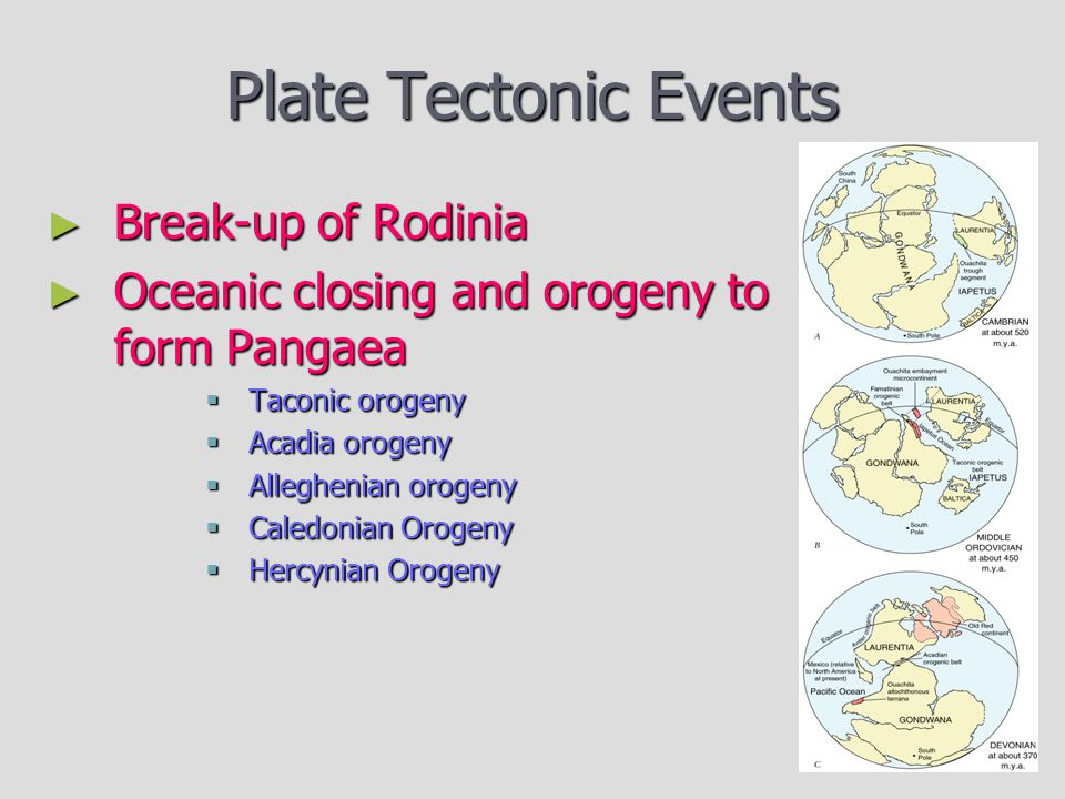 Plate Tectonic Events Break-up of Rodinia