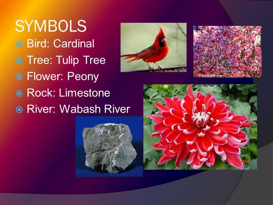 SYMBOLS Bird: Cardinal Tree: Tulip Tree Flower: Peony Rock: Limestone