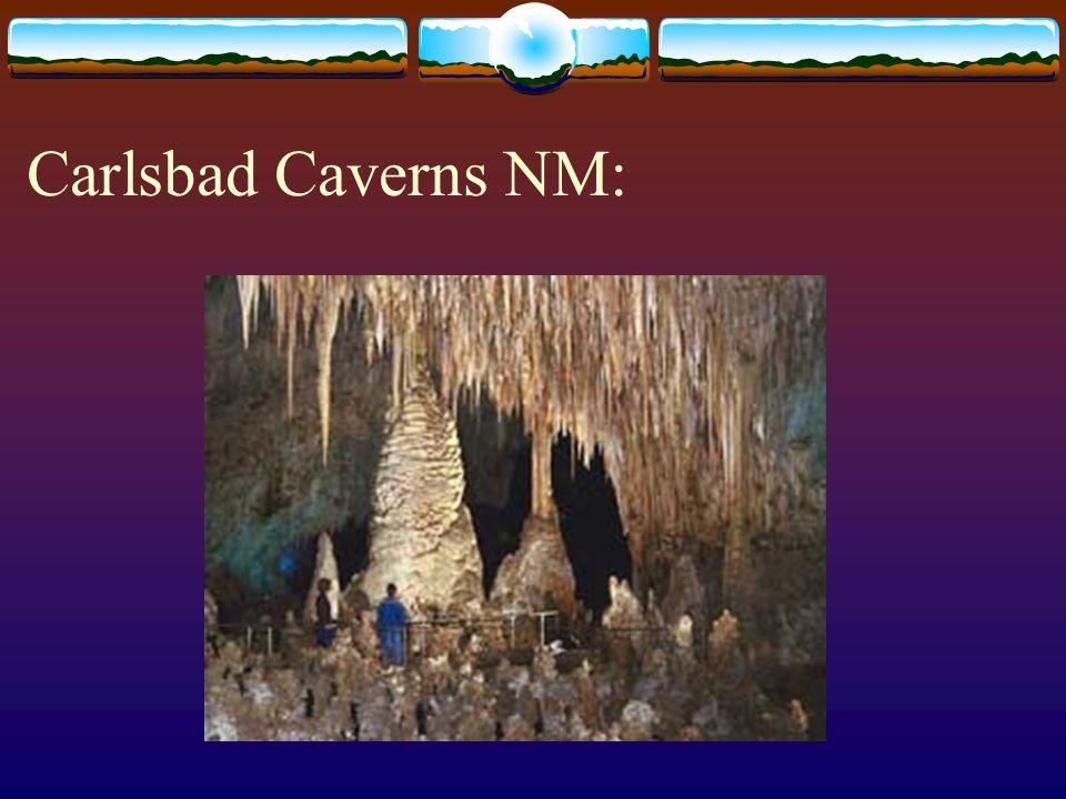 Carlsbad Caverns NM: