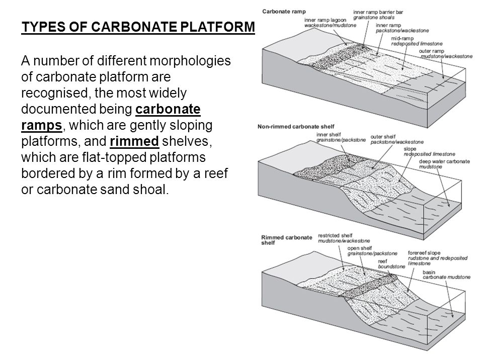 TYPES OF CARBONATE PLATFORM