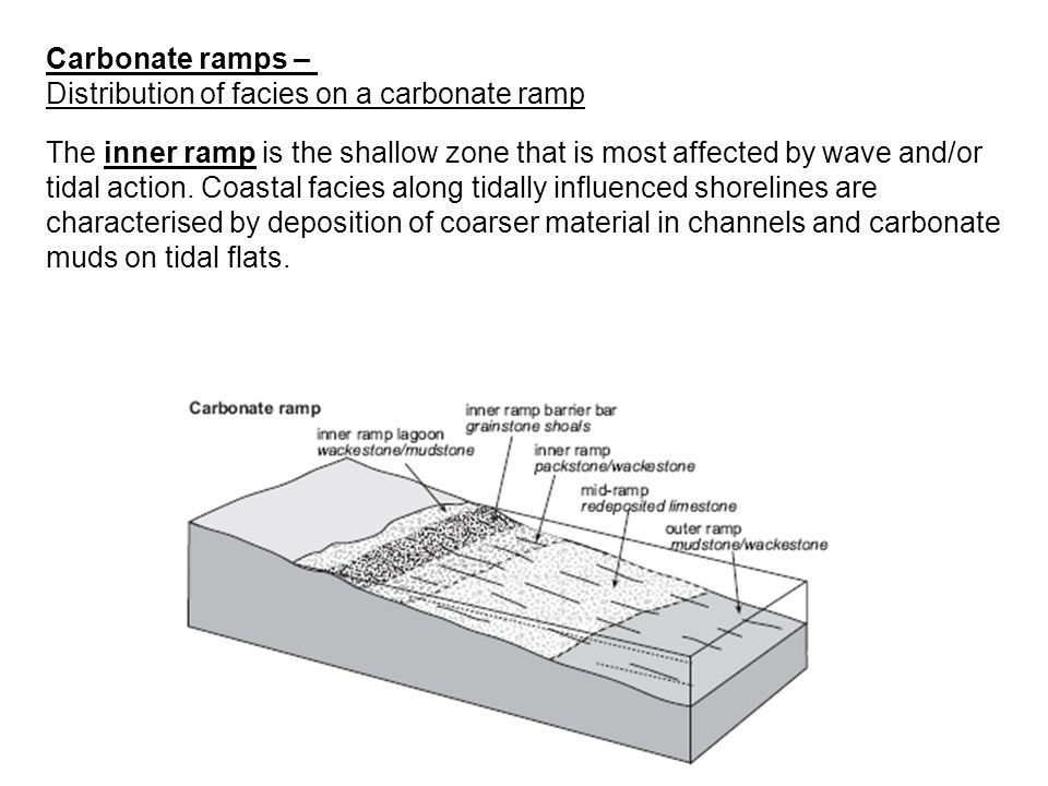 Carbonate ramps – Distribution of facies on a carbonate ramp.