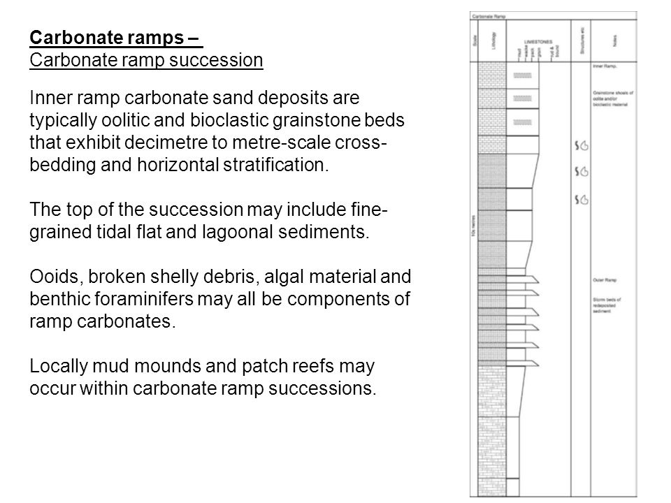 Carbonate ramps – Carbonate ramp succession.