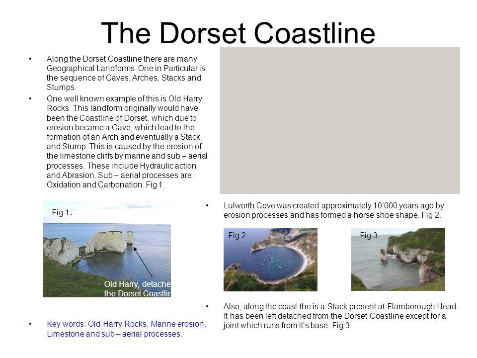 The Dorset Coastline