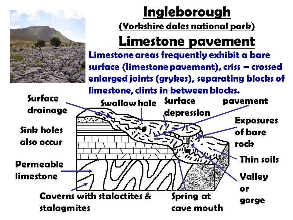 Ingleborough (Yorkshire dales national park) Limestone pavement