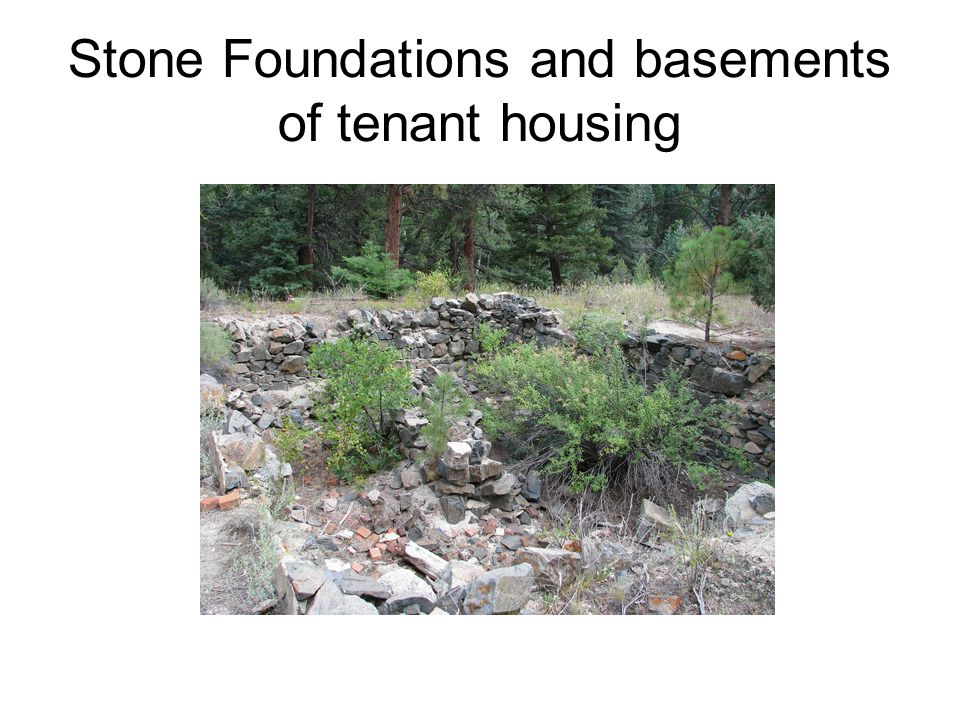 Stone Foundations and basements of tenant housing