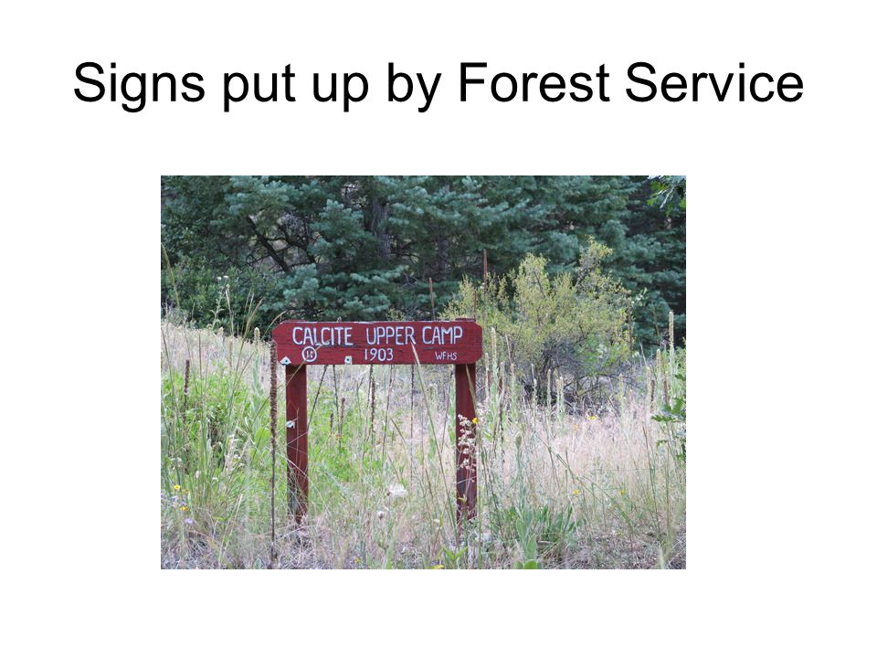 Signs put up by Forest Service