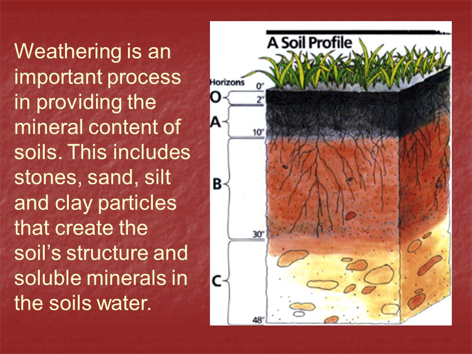 Weathering is an important process in providing the mineral content of soils.