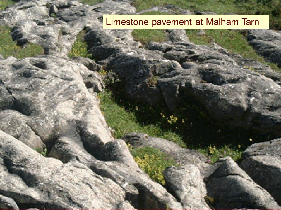 Limestone pavement at Malham Tarn