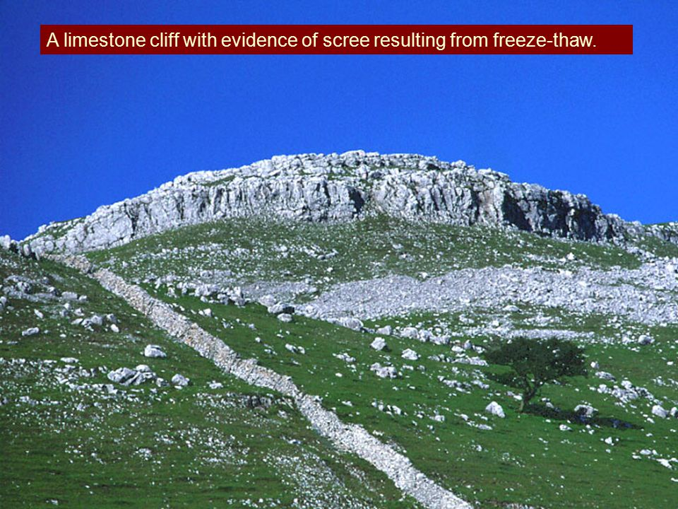 A limestone cliff with evidence of scree resulting from freeze-thaw.