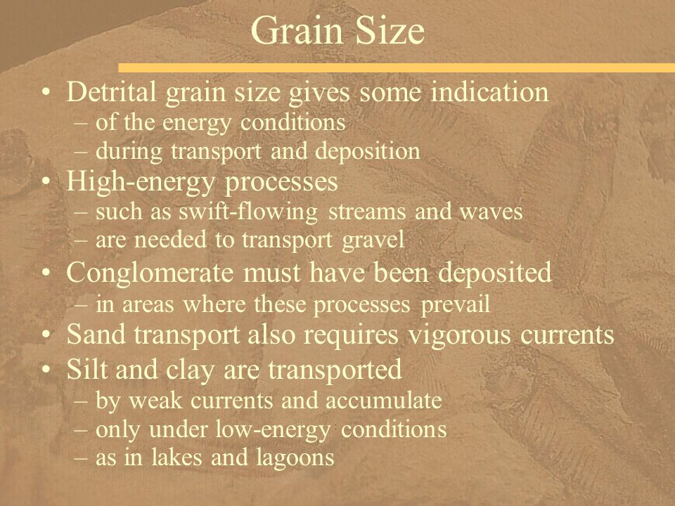 Grain Size Detrital grain size gives some indication
